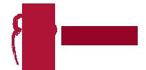 Zinzoe Logo